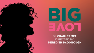 Big Love @ Round House Theatre