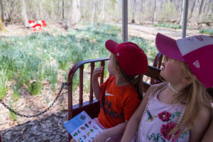 Spring Eye Spy Trains @ Cabin John Miniature Train | | |